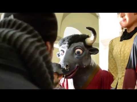 Vídeo promocional Brut i Bruta 2015