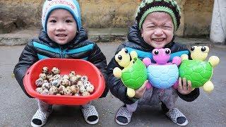 Trò Chơi Bé Đi Săn Trứng Rùa| Gia Đình Baby Shark