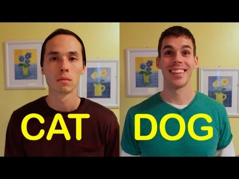 Cat-Friend vs. Dog-Friend - Very Funny!
