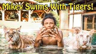 Mikey Williams Swims with Tigers and More ! | Myrtle Beach Safari