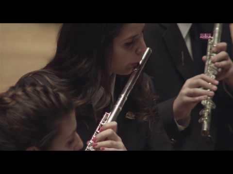 Dredred SOCIEDAD UNIÓN ARTÍSTICO MUSICAL DE SOLLANA