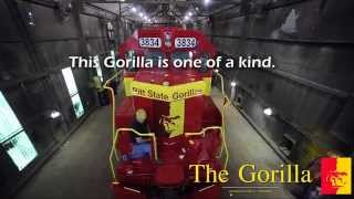 'The Gorilla Train