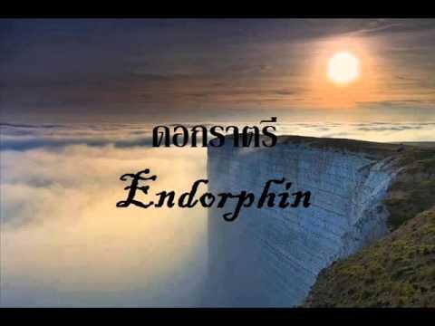 ดอกราตรี - เอ็นโดรฟิน