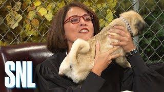 Court Show - SNL