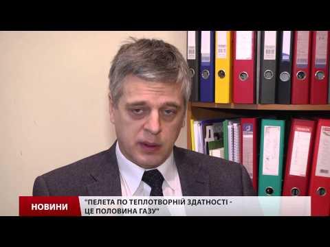 Благодаря биотопливу Украина сократила потребление газа на 20%