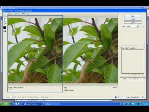 Tutoriel Photoshop Reduction images pour envoie via courriel