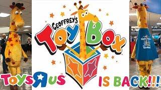 Toys R Us WILL RETURN & Rebrand As Geoffrey's Toy Box!!!!!!!