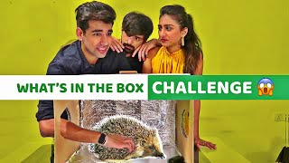 What's in the Box Challenge | Rimorav Vlogs