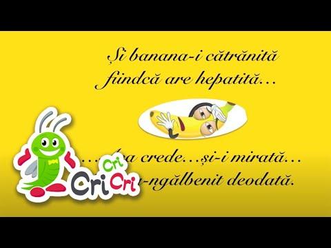 Cântece pentru copii - Fructele