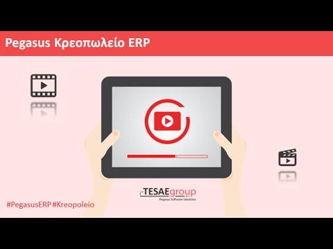 Pegasus Κρεοπωλείο ERP Start Up