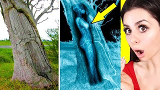 Strange Things Found in Unexpected Places !