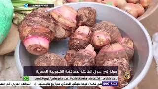 جولة في سوق الخانكة بمحافظة القليوبية المصرية     -