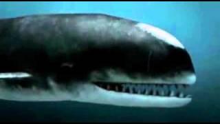 深海のハンター3