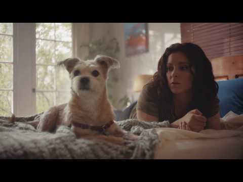 #AdoptPureLove – Shelter Pet Project – Rachel Bloom PSA :30