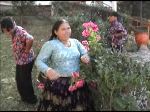 Huayño boliviano