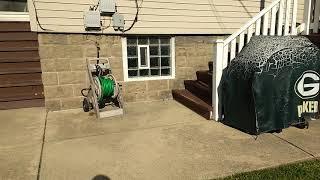 Cicada Killer Wasps Have Taken Over my Backyard