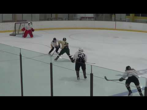 Week 7 Malkin Highlights: 2016 Quest Hockey 4 on 4 Summer League