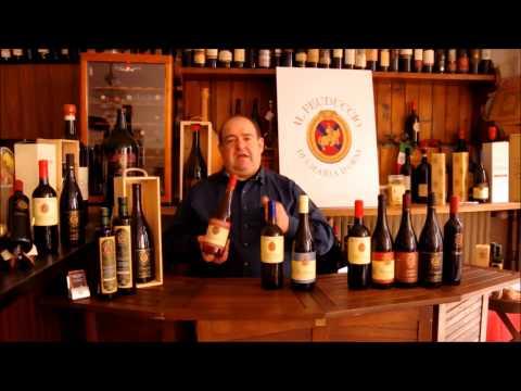 Fiulana Wein Webshop6
