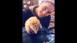 Jeffree Star Gets A New Puppy| SnapChat Story