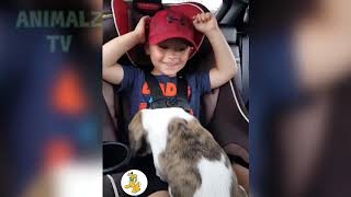 New Funny Videos pranks 2018 - Try Not To Laugh - Funny videos - Funny Fails of 2018 #258