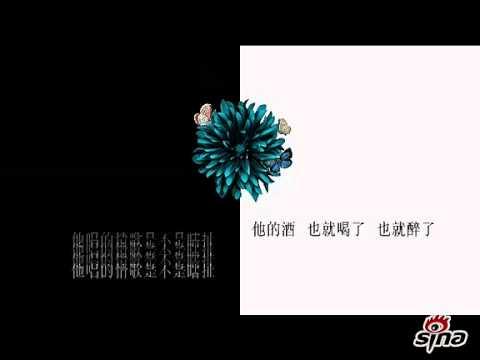 陶晶莹《真的假的》字幕版MV