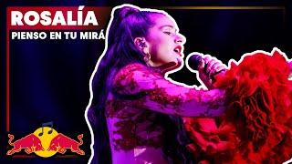 Rosalía – Pienso en tu mirá | Plaza de Colón (Madrid) | Live 2018 Red Bull Music