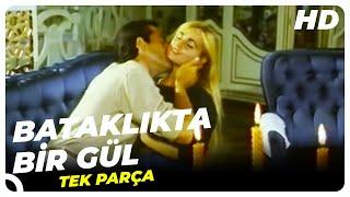 Bataklıkta  Bir Gül - Türk Filmi