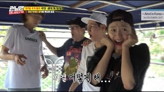 [LEGEND EP. 379-3]Collect crocodile eggs from the wild crocodile nest!(ENG Sub)