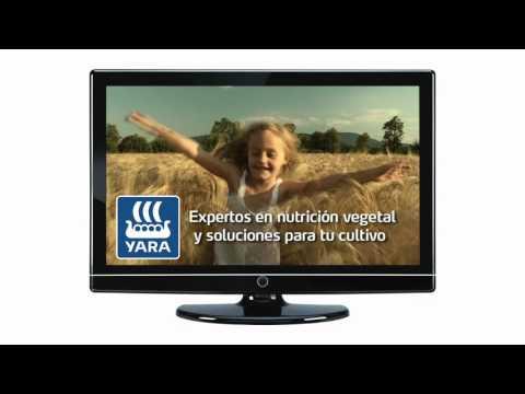 Yara Iberian, un año lleno de novedades