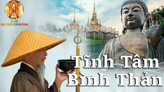 """Lời Phật Dạy """"ĐỪNG NÍU KÉO QUÁ KHỨ"""" Hãy Tĩnh Tâm Bình Thản Giữa Dòng Đời Vạn Biến - #Mới"""