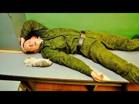 Мурзилки Int. -- пародия «Комарово» (И. Скляр)