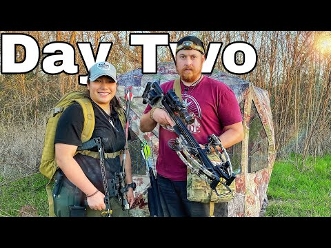 Bow Hunting Attempt! Day 2 of 7 Day Subscriber Survival Challenge Texas