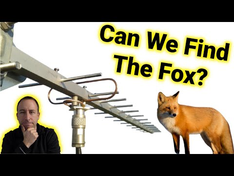Ham Radio Fox Hunt: Highlights From New Years Day 2021