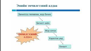 Лекц 7 Эмийн гаж нөлөөний талаар интерактив сургалтын гарын авлага