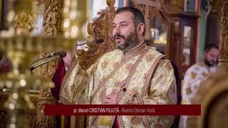 pr. diacon Cristian Filiuta - predica la Intrarea in biserica a Maicii Domnului (21.11.2017)