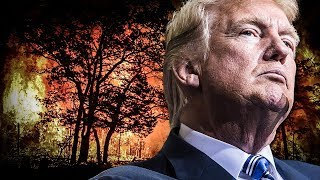 Trump Tweets About NFL As America Literally Burns To The Ground