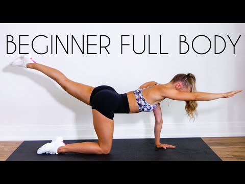 20 min FULL BODY Workout for TOTAL BEGINNERS (No Equipment)