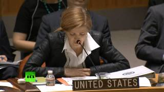 Чуркин попросил постпреда США не оскорблять Россию