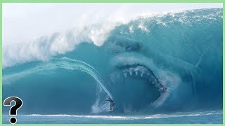 What If Megalodon Sharks Didn't Go Extinct?