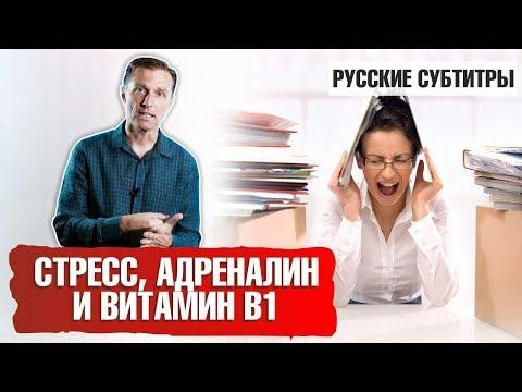 СТРЕСС, АДРЕНАЛИН и ВИТАМИН В1 (русские субтитры) photo