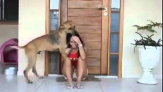 Touching Video of a Rescued Dog Shows his Gratitude!