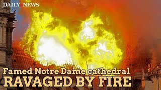 Fire tore through Notre Dame cathedral in France