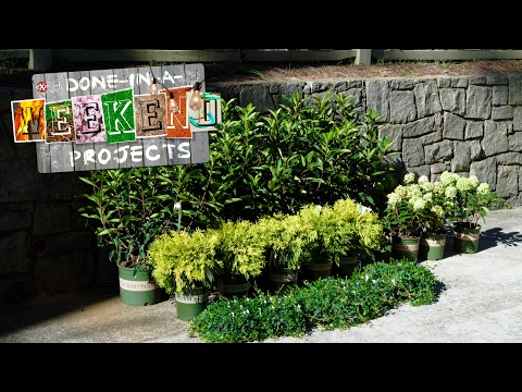 Layer Up: Choosing Landscaping Plants That Speak to You—And Your Yard