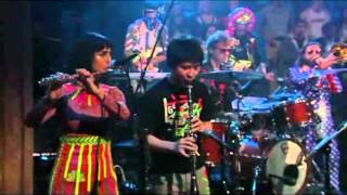 """Sufjan Stevens - """"Too Much"""" on Jimmy Fallon"""
