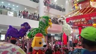 Yick Nam Lion Dance 2018