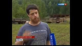 Весёлый Молочник – Русский фермер американец