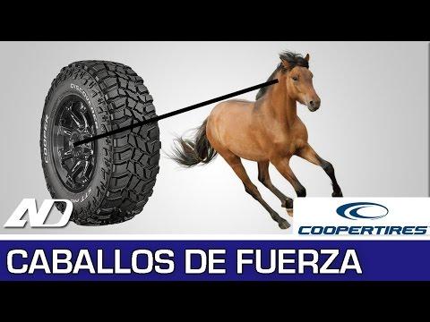 """¿Qué es un caballo de fuerza"""" - Cooper Consejos en AutoDinámico"""