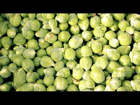 Mash Direct - Brussels Sprout Season