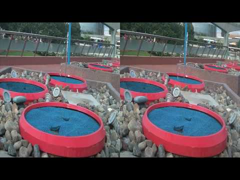 Epcot Imagination Fountains in 3D (yt3d:enable=true)