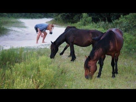 Cười Sảng Khoái 😀 Với Những Tình Huống Hài Hước Vui Nhộn Lầy Lội Và Bá Đạo Mới Nhất P6